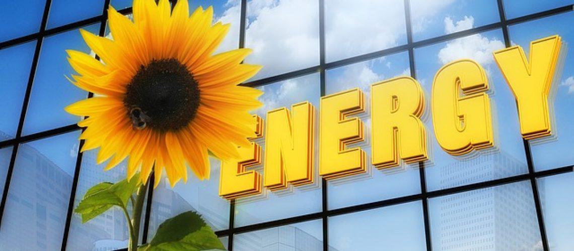 מה רוב האמריקאים מחפשים לעצמם בבית חדש? מערכת סולארית!